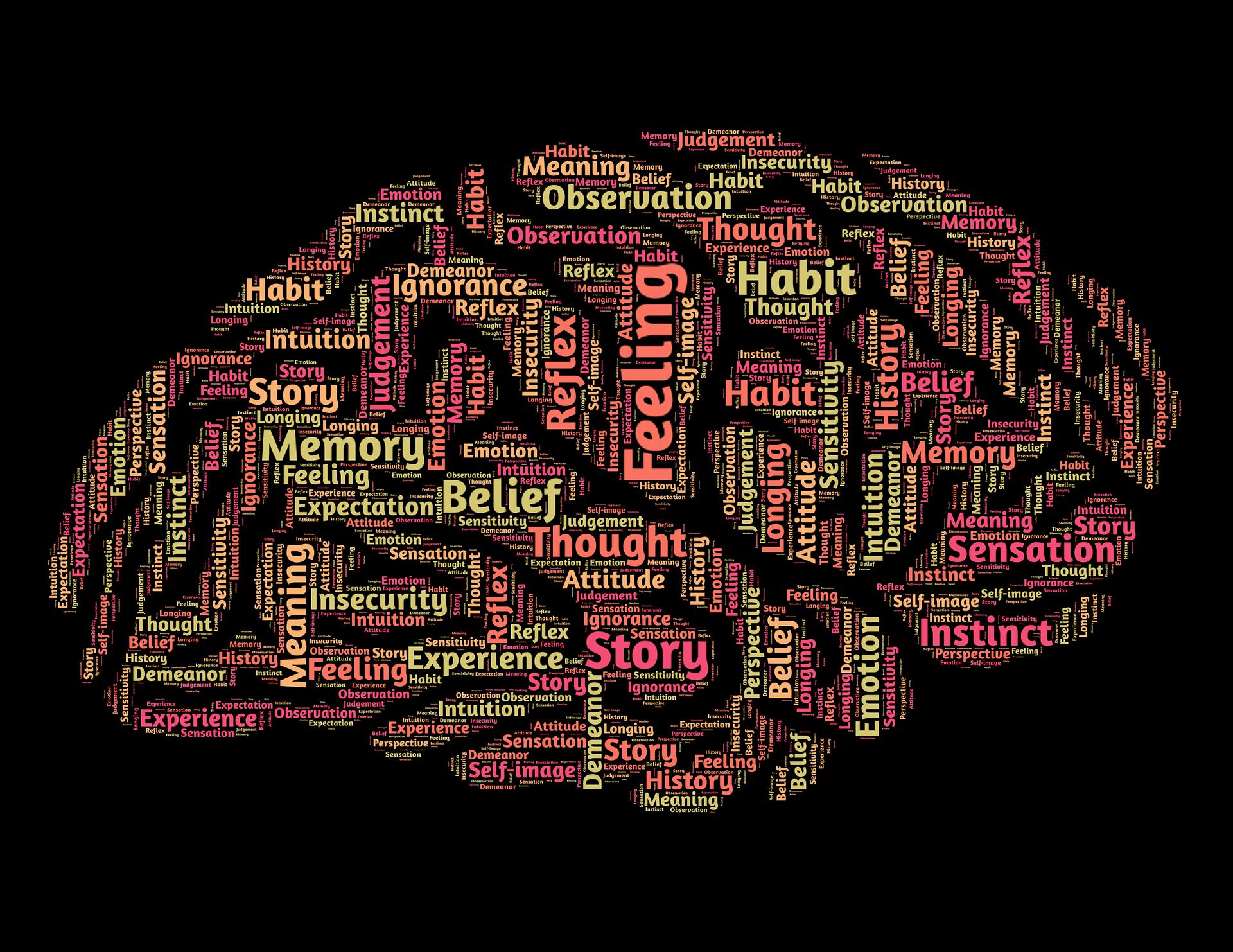 como-compra-nuestro-cerebro